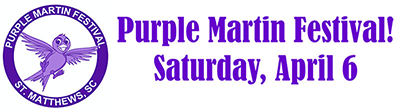 Purple Martin sidebar